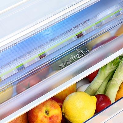 frigorifero beko rcne520e20ds a libera installazione holiday